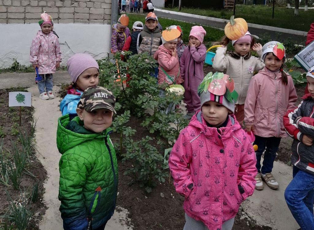 Смотр-конкурс «Лучшая грядка на территории детского сада»